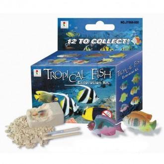 Խաղալիք գիպսե ձուկ