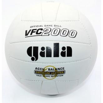 Գնդակ վոլեյբոլի