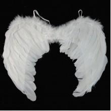 Հրեշտակի թևեր փետուրից միջին