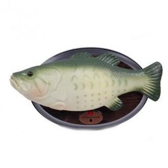 Երգող ձուկ, էլ.մարտկոցով`Песня рыбака