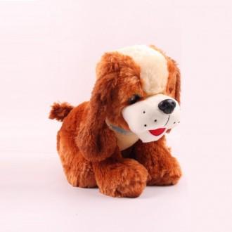 Փափուկ խաղալիք շնիկ 36սմ-ոց նստած, մեծ